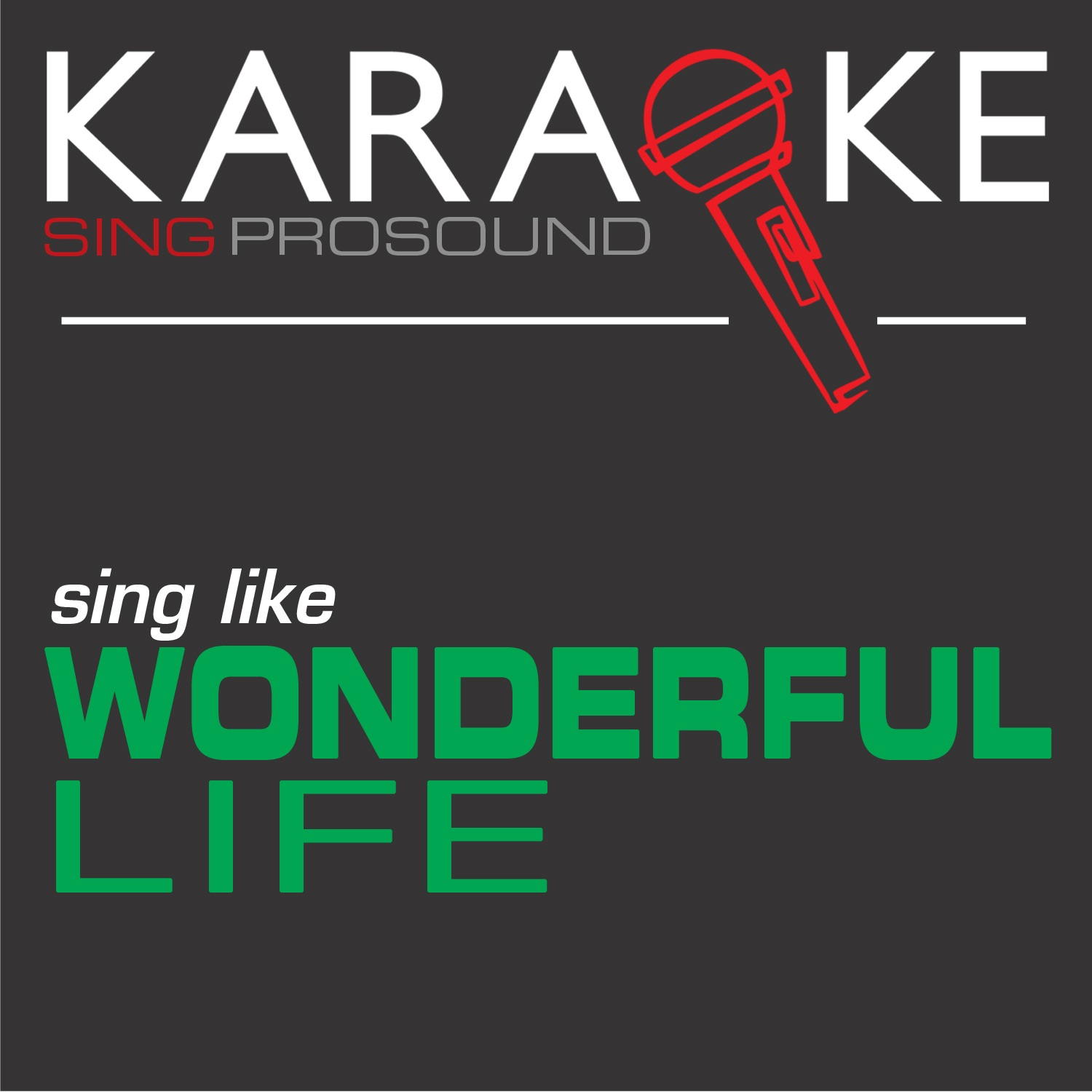 Karaoke in the Style of Wonderful Life - EP