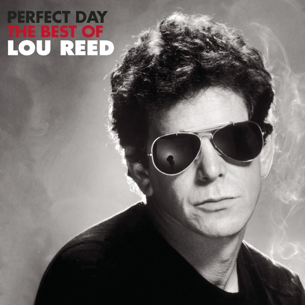 Cover art for Perfect Day