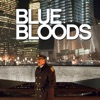 Blue Bloods, Season 3 wiki, synopsis