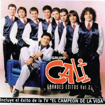 Grupo Cali Grandes Éxitos, Vol. 2 - Grupo Cali