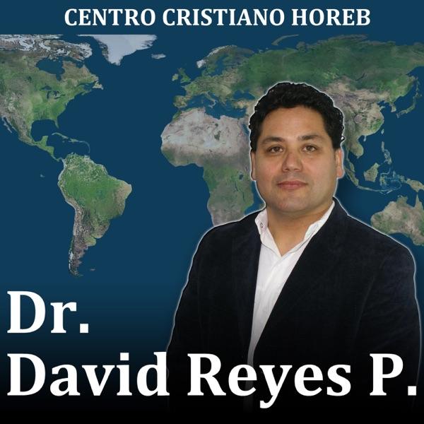 Dr. David Reyes P.