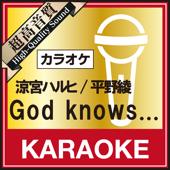God knows...(カラオケ)