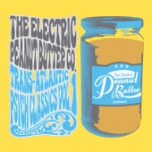 The Electric Peanut Butter Company - Austin City Limiter