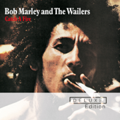 Catch a Fire (Deluxe)