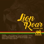 Various Artists - Glory of The King