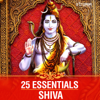 25 Essentials  Shiva songs