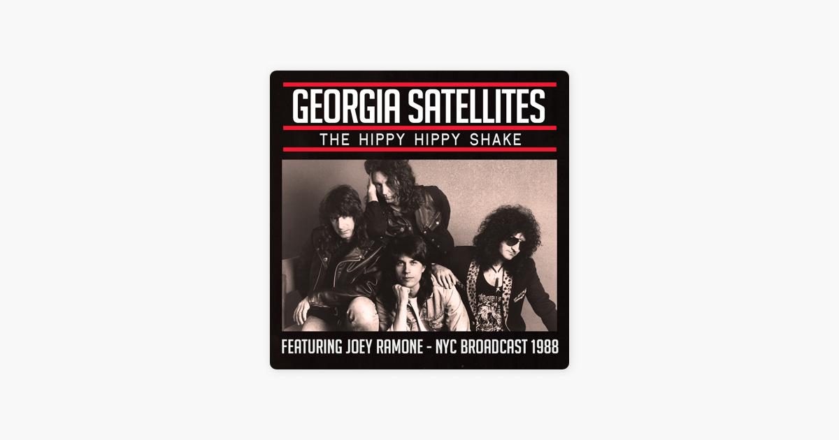 Hippy hippy shake georgia satellites