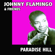 I - Johnny Flamingo