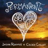 Permanent feat Colbie Caillat Single