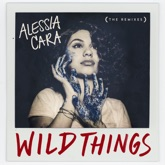 Wild Things (The Remixes) - EP