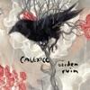 Calexico - Garden Ruin Album
