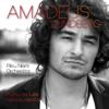 Amadeus Lundberg & Riku Niemi Orchestra - Keinu kanssani artwork