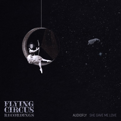 She Gave Me Love - Single - Audiofly album