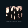 The Sisters of Mercy - More artwork