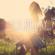 I Never Felt So Right (Radio Mix) - Ben Delay