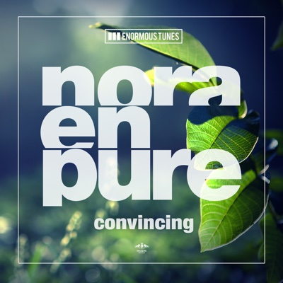 Convincing - Single - Nora En Pure album
