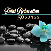 [Download] Total Relaxation - Ocean Waves MP3