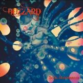 Buzzard - Kingdom
