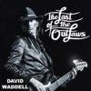 The Last of the Outlaws - David Waddell
