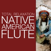 Native American Flute - Quite Possibly the Most Relaxing Flute Music You'll Ever Hear