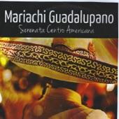 Mariachi Guadalupano - El Carbonero