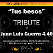 Tus besos (In the Style of Juan Luis Guerra 4.40) [Karaoke Version]