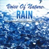 Voice of Nature Rain Relaxed Music For Mental Balance and Harmony