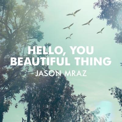 Hello, You Beautiful Thing - Single - Jason Mraz