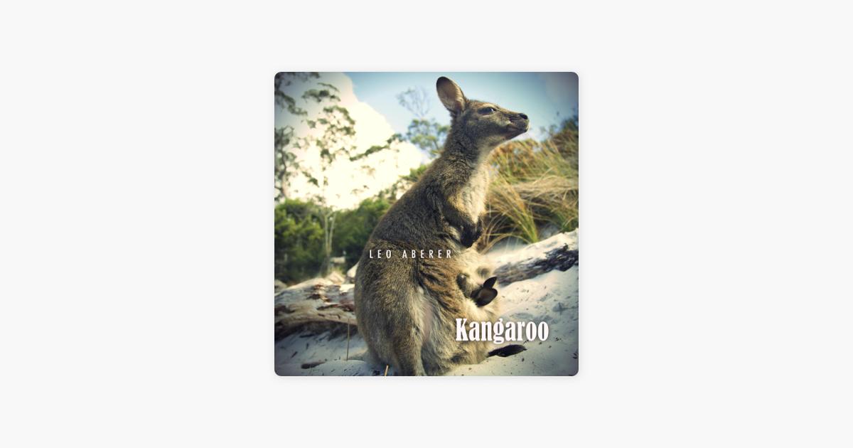 leo aberer kangaroo