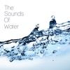 The Sounds of Water ジャケット写真