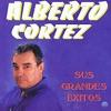 Castillos en el aire by Alberto Cortez iTunes Track 10