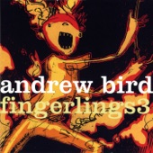 Andrew Bird - Measuring Cups
