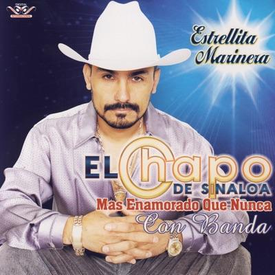 Mas Enamorado Que Nunca Con Banda - El Chapo De Sinaloa