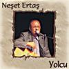 Neşet Ertaş - Yolcu artwork