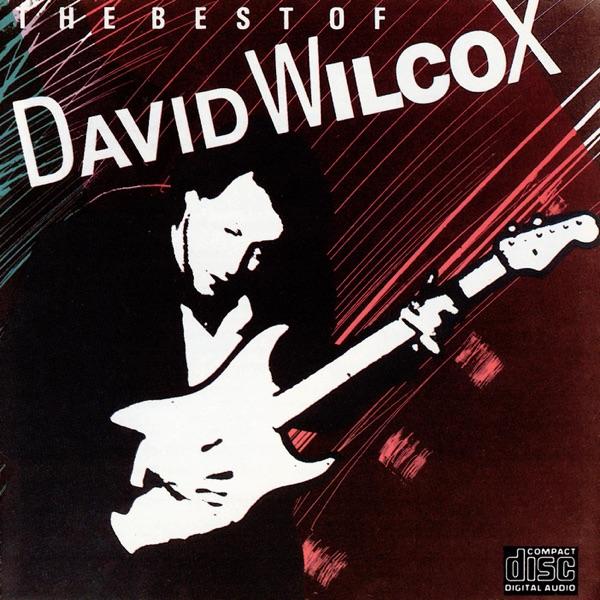 David Wilcox - Riverboat Fantasy