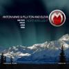 Anton Make, Plu-Ton & Elev8 - Northern Light (Loquai Remix) artwork