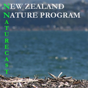 New Zealand Nature Program Naturecast