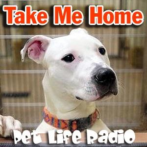 Take Me Home - Pet Adoption and Animal Rescue - Pets & Animals on Pet Life Radio (PetLifeRadio.com)