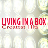 Living In a Box - Living in a Box (Extended Mix)