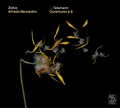 Zefiro - Ouverture in D Major - For Trumpet, 2 Oboes, Bassoon, Strings and Basso Continuo - 6. Menuet