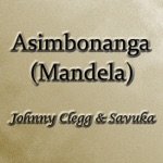 Johnny Clegg - Asimbonanga (Mandela)