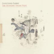 The Midnight Organ Fight - Frightened Rabbit - Frightened Rabbit