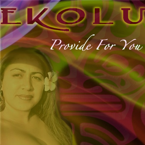 Provide for You - Single