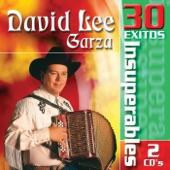 David Lee Garza - Dos Corazones