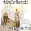 LSU Tigers Football Single