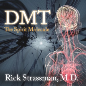 DMT: The Spirit Molecule: A Doctor's Revolutionary Research into the Biology of Near-Death and Mystical Experiences (Unabridged) - Rick Strassman audiobook, mp3