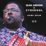 Sean Ardoin & Zydekool - Back To You