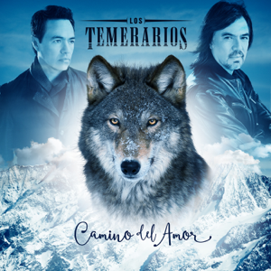 Los Temerarios - Camino del Amor