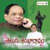 Telugu Shankaaravam