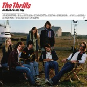 The Thrills - Old Friends, New Lovers